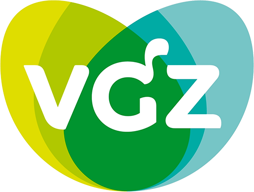 VGZ: Securing System Vulnerabilities from the Network to ...